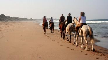 Bush and Beach - Cavalgada pelas Praias