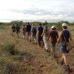 Parque Kruger - Safári