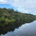 Amazoniando