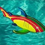 Ocean Sole Shark